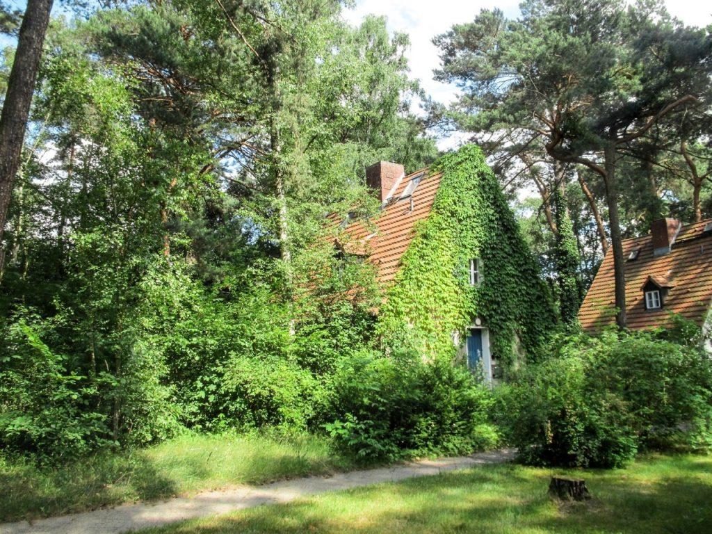 Dom dla kogoś, kto kocha przyrodę