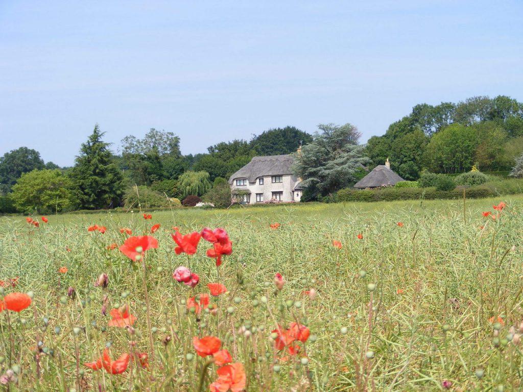 Wymarzony dom na wsi